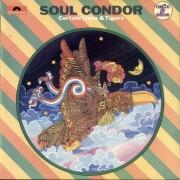 Soul Condor